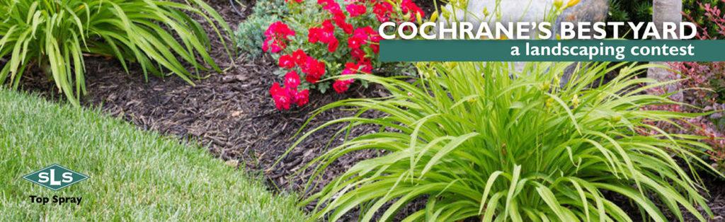 Cochranes Best Yard