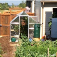 Accelerate your growing with a greenhouse
