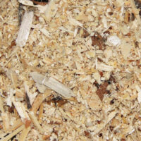 Sawdust and Shavings